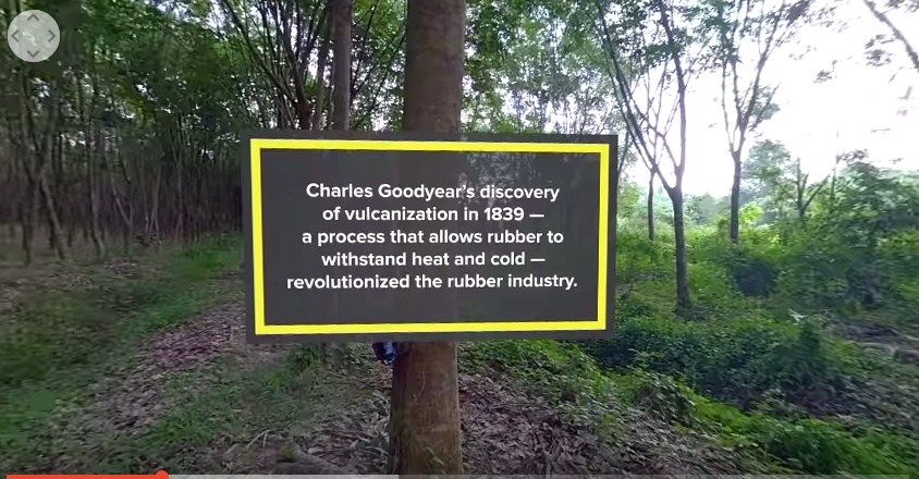 Double Coin Thai plant - goodyear factoid